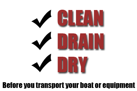 Clean, Drain, and Dry!