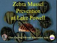Lake Powell Presentation